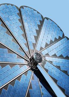 Smartflower POP +. Un girasol solar que genera y almacena toda la electricidad que necesitas.
