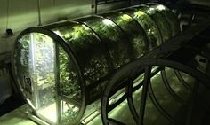 The Prototype Lunar/Mars Greenhouse project would allow astronauts on deep space missions access to healthy, fresh food year-round.