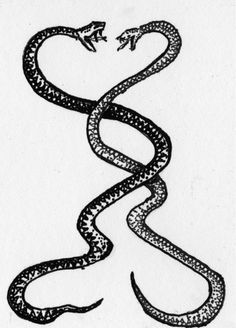 155 best snake tattoos images snakes snake tattoo tattoo inspiration Brown Tree Snakes in Hawaii i always loved the idea of a snake tattoo tattoo designs and meanings tattoos with