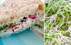 Cheese, Sour Cream Spread, Radishes and Alfalfa Sprouts Sandwich - Perfect for a picnic or tea party