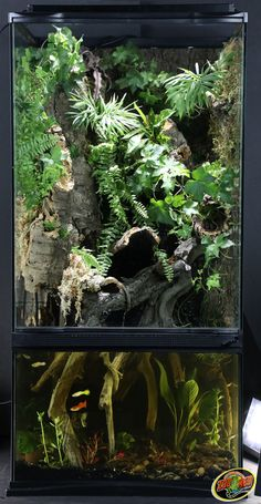 Paludarium aquatic and terrestrial habitat for reptiles, fish, and invertebrates that can hold 10 gallons of water made by Zoo Med. This beautiful planted tank combines terrarium and aquarium into one.