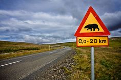 PAD217 - Warning! Polar Bears!    On June 3rd, a polar bear was discovered prancing around the mountain Þverárfjall in the north of Iceland. It was hunted down and shot to death, before it could wreak any havoc.    When we were driving the road on Þverárfjall, on our way to Hofsós, we saw this sign, and a few days later, on our way back, I decided to take a picture of it.