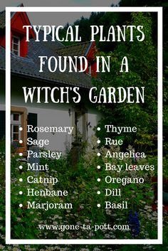 What is a Witches Garden? A Witches Garden is an herb garden specifically design. What is a Witches Garden? A Witches Garden is an herb garden specifically designed and used for the cultivation of cooking and magickal, and/or medicinal herbs. Magic Herbs, Herbal Magic, Healing Herbs, Medicinal Herbs, Healing Prayer, Garden Care, What Is A Witch, Witchy Garden, Garden Spells