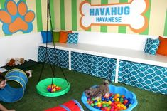 HavaHug Havanese Puppies, is a Michigan based Havanese breeder of quality Chocolate AKC Havanese Dogs. Non-shedding, Hypo-allergenic Puppies. Breeder of the Most Beautiful Chocolate Havanese! Dog Play Room, Puppy Room, Dog Rooms, Dog Boarding Kennels, Dog Kennels, Puppy Playground, Puppy Playpen, Havanese Puppies For Sale, Dog Kennel Designs