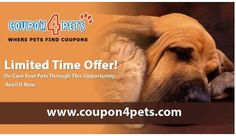 We have 25 california pet pharmacy coupons for you to consider including 25 promo codes and 0 deals in December Grab a free agrariantraps.ml coupons and save money.5/5(1).