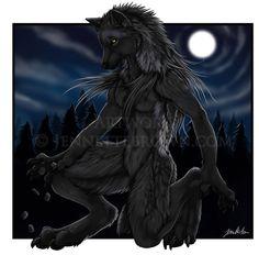 Rune Casting - Jennette Brown Digital Fantasy - Wolves and Werewolves Werewolf Girl, Werewolf Hunter, Female Werewolves, Vampires And Werewolves, Furry Wolf, Furry Art, Fantasy Creatures, Mythical Creatures, Fantasy Wolf