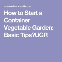 How to Start a Container Ve able Garden Basic Tips