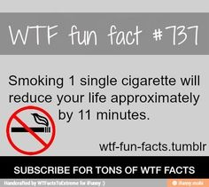 WTF Fun Facts is updated daily with interesting & funny random facts. We post about health, celebs/people, places, animals, history information and much more. New facts all day - every day! Funny Weird Facts, Wtf Fun Facts, Random Facts, Creepy Facts, Random Stuff, Quit Smoking Motivation, Help Quit Smoking, Wow Facts, True Facts