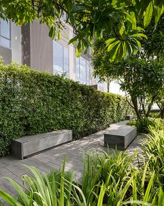 Ashton Morph Sukhumvit 38 by Shma Company Limited 07 « Landscape Architecture Works | Landezine