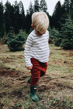 @laurenpeelman , Christmas time, Christmas tree, toddler boy