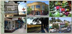i do love this funky place. // Sebastopol, California