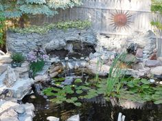 My goldfish pond has multiple waterfalls for 2015