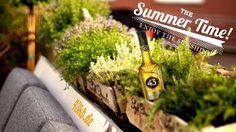 Das perfekte Getränk für eine spritzige Sommerparty Cocktails, Summer, Schnapps, Cooking, Recipies, Craft Cocktails, Summer Time, Cocktail, Drinks