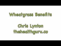 Wheatgrass Benefits - http://www.thehealthguru.co    Wheatgrass Benefits  Find out about all the unique and amazing benefits of wheatgrass for the human body. This truly is a superfood that everyone should include in their diet for health, wellness and weight loss!