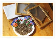 make your own flowerseedspaper. Make Your Own, How To Make, Altered Books, Diy Projects To Try, Upcycle, Birthdays, Homemade, Gifts, Inspiration