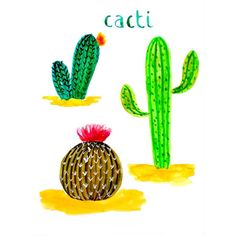 Cacti. Happy Friday everyone! Cheers!  #cbdrawaday #creativebug #30daysofpainting #junechallenge #makeart #artoftheday #painteveryday @augustwren @creativebug