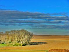 mi tierra, landscape of castilla y León, Spain
