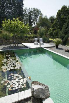 La piscine biologique - une solution éco-friendly pour votre jardin Plus