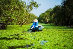 Harmony - Tra Su forest in Chau Doc (Vietnam)  ©Réhahn Photography