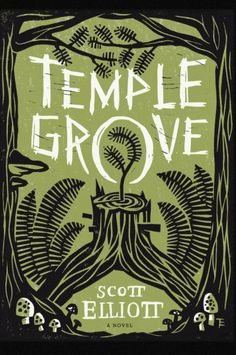 Temple Grove by Scott Elliott | Book Cover By Thomas Eykemans