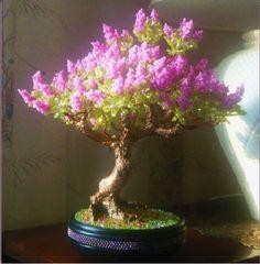 Миниатюрное дерево из бисера
