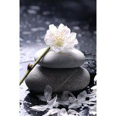 images populaires: zen gratuites Beautiful Artwork, Beautiful Flowers, Art Carte, Brighten Your Day, Sustainable Design, Pebble Art, Belle Photo, Interior Design Living Room, Feng Shui