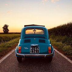 Fiat500nelmondo (@fiat500nelmondo) • Foto e video di Instagram Fiat 500, Rear View, Beautiful Pictures, Vehicles, Car, Video, Instagram, Italia, Automobile