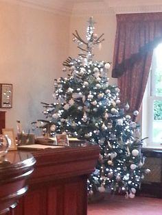 christmas trees in london, large led christmas tree outside city