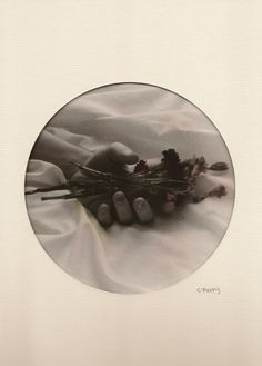 "madameretro: ""Delirium #12 Photographer: Corinne Perry (British Silver print 2012 """