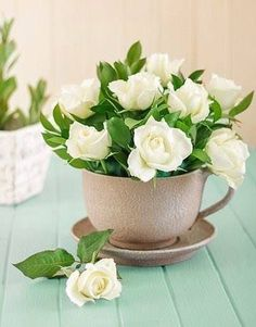 Gardenias in a tea cup. Love gardenias. As beautiful as they smell.