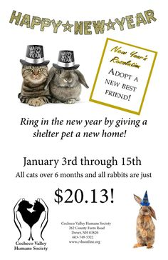 Stop by Cocheco Valley Humane Society between 1/3 and 1/15 and make a new best friend for the new year!