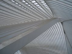 Station Guillemins Liege, by Calatrava
