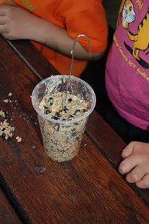 Bird Feeders - flour, water, glucose syrup, bird seed & peanuts, fruits, raisins, etc. Mix, scoop into a disposable cup with a wire hanger & leave to dry overnight. Great kids project!