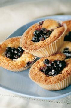 Gluten Free Vegetarian Recipes, Fodmap, No Bake Cake, Cheesecake, Muffins, Baking, Breakfast, Desserts, Food