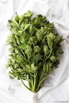 A wild and bushy celery bunch from the Boulder Farmers Market by La Domestique