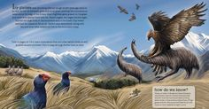 Harpagornis moorei swoops down on a Moa in a prehistoric New Zealand grassland as portrayed by Ned Barraud Prehistoric Wildlife, Prehistoric World, Prehistoric Creatures, Alien Creatures, Curious Creatures, Fantasy Creatures, Jurassic Park World, Extinct Animals, Fauna