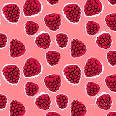Summer Fruits and Berries - Amy Walters Illustrator