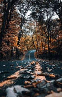 Hi Album on Imgur Pinterest photography, Autumn
