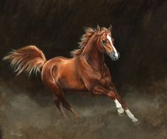 """Chestnut Arab"" by Caroline Cook"
