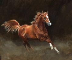 """Chestnut Arab"" by Caroline Cook"