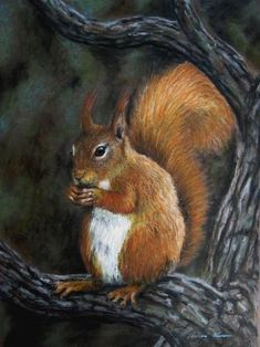 Oil Pastel Squirrel Art Workshop Have you always wanted to learn to use oil pastels? Step by Step Instructions with Diana & Richard Moore