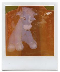 unicorn expired polaroid