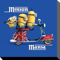 Minions - Minion Mania Blue - Canvas Print 40 x 40 cm