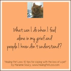 """Have you ever heard the """"It's just an animal - get over it"""" when you are grieving a pet? See suggestions for coping in """"Healing Pet Loss - 10 tips for coping with the loss of a pet"""""""