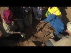 hard evidence case studies in forensic anthropology pdf
