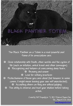 Black Panther Totem. Totem and Spirit Animals. Pin created by Bell Dragonfly for The Magickal Circle School Class Pagans of Pinterest. www.themagickalcircle.net