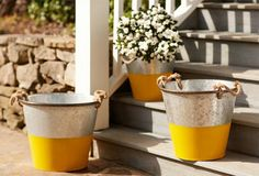 I have a galvanized bucket I got from my husbands father when he passed away.  I have nothing to do with it, I found these buckets and love them. Iam going to dip a bucket in yellow paint to copy this bucket! The Bright Backyard on OneKingsLane.com