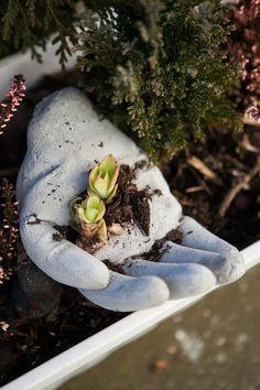 Ozdoba do záhonku, originální místo pro zasazení drobných květin nebo pro pár oblázků z pláže – to je betonová ruka; archiv redakce