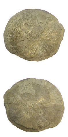 Pyrite 181096: Sun Pyrite 189Gram Golden Shining Uneven Shape Loose Specimen Gemstone Er11450 -> BUY IT NOW ONLY: $30 on eBay!