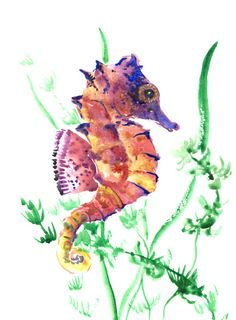 SeaHorse, Original watercolor painting, 12 X 9 in, Indigo  seahorse art, seaworld animal art, indigo blue red colors